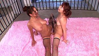 Hiyoko Morinaga and Rin Kawai want to make each other cum
