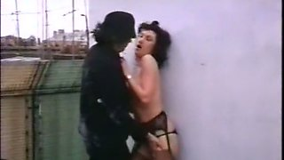 Beautiful and nasty brunette vitnage chick fucked around the corner